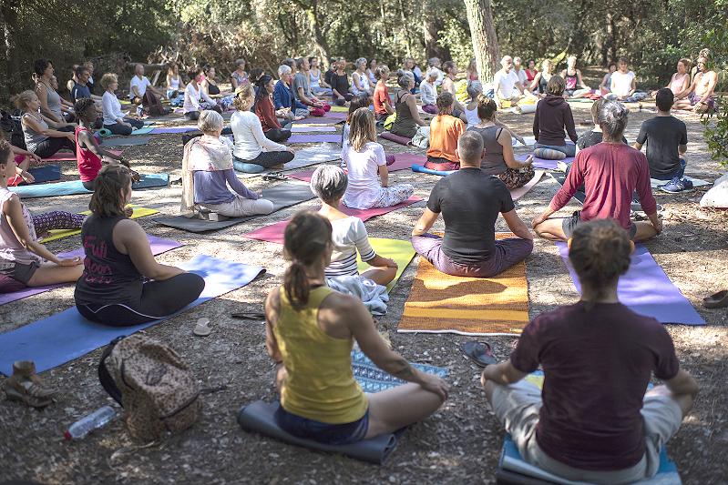Cours collectifs de yoga dans la nature